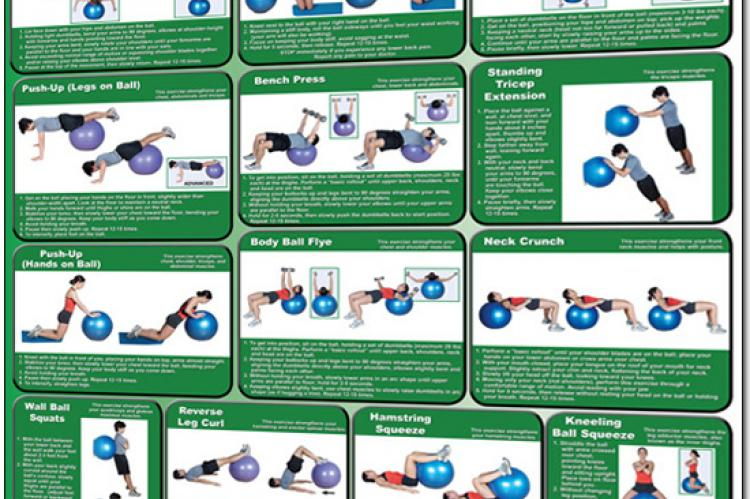 Body Ball Exercise Poster - Upper and Lower Body