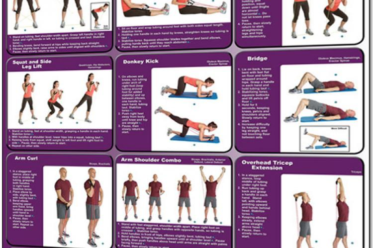 Resistance Tubing Exercises Poster - Backs, Legs, Biceps, Chest and Triceps