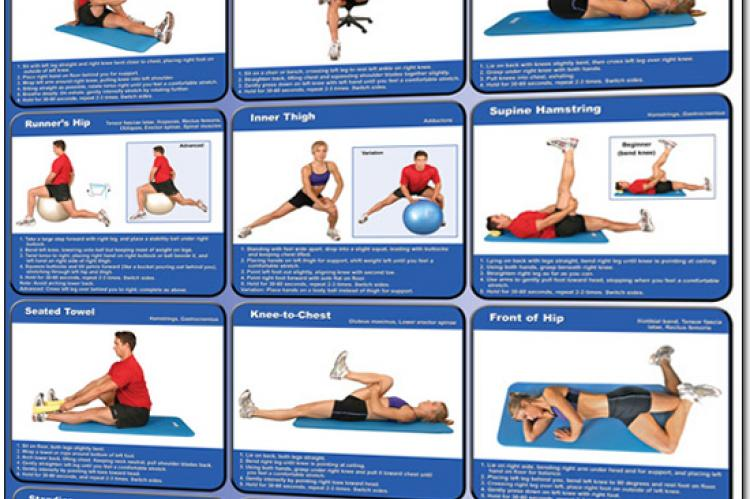 Stretching Exercises Poster - Lower Body