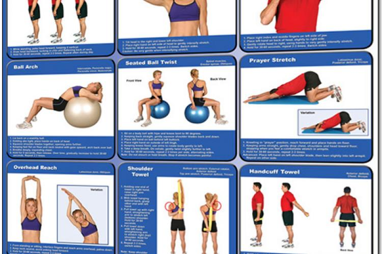 Stretching Exercises Poster - Upper Body