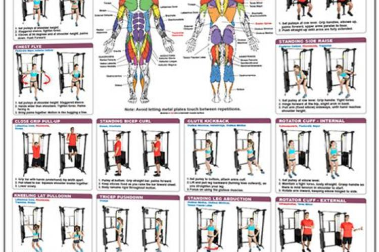 Functional Trainer Exercises Poster - Basics