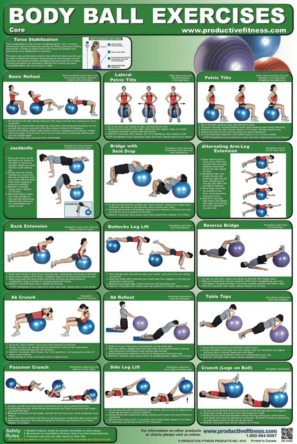 Thera-Band® Pro Series SCP 65cm Exercise Ball | HomeFit